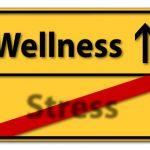 Ablauf eines Massagekurses Massageausbildung bei Medios Seminare