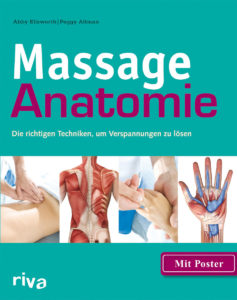 Massage anatomie ellsworth